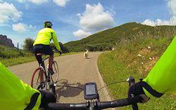 escursioni bici