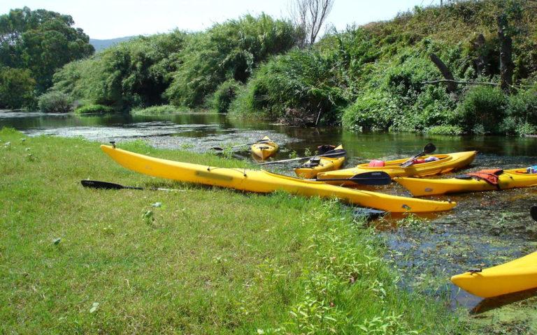 Discese fluviali in canoa